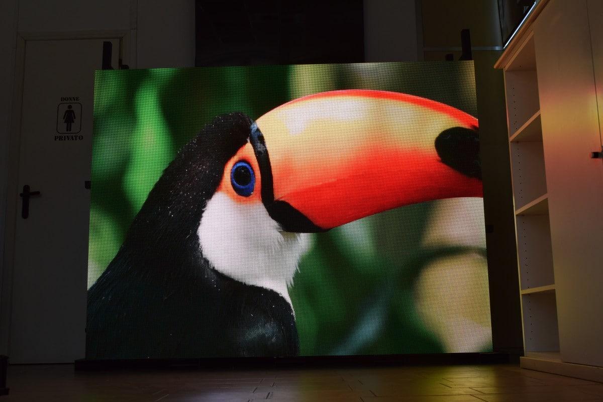Quanto costa uno schermo a LED?